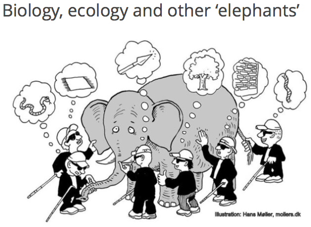 "Biology, ecology and the ""elephant"""